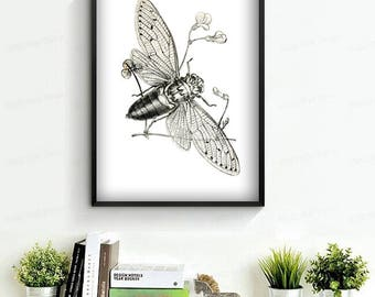 Cicada print insect art insect print poster wall art printable black and white poster 5x7 8x10 8x12 12x16 12x18