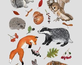 Woodland Creatures -  A4 print