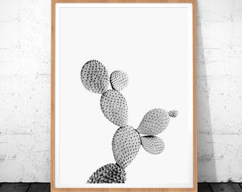 Cactus Wall Art, Cactus Print, Cactus Plant, Botanical Print, Plant Art, Plant Print, Plant Printable, Cactus Black White, Cacti Printable
