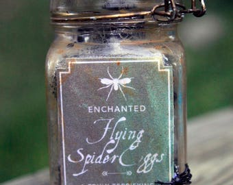 PRICE REDUCED // Flying Spider Eggs // Apothecary Shelf Ingredient,  Halloween Decoration,
