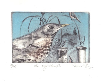 The Song Thrush, etching by Moira McTague