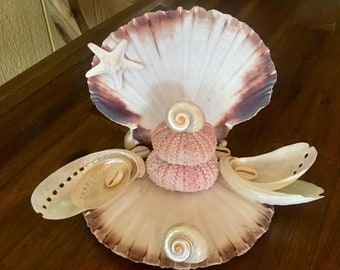 Business Card Holder, Seashell Business card, Coastal, Nautical, Office Decor, Seashell, Beach, Pink Sea urchin, Gift for Her, Card Holder