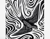 Swallow - golondrina lino...