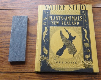 Nature Study Plants and Animals of New Zealand W. R. B. Oliver first published 1948
