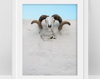 Ram Skull Decor, Goat Skull Photo, Greek Island Travel Poster, Animal Skull Art Printable, Neutral Color, Greek Art, Minimalist Photography