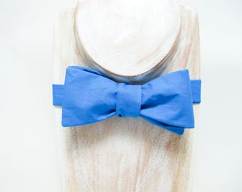Sky Blue Freestyle Small Thistle Bow Tie