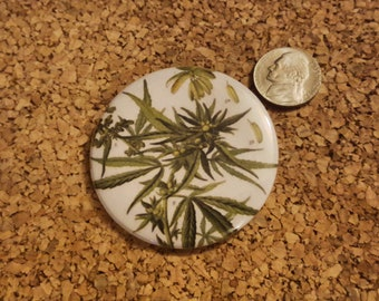 Cannabis Sativa from Figure from Pharmacopoeia Borussica - 2.25in pinback button