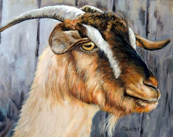 Cashmere Goat Farm Art print, Goat Art by Dottie Dracos, Brown Cashmere Goat on the Farm, Farm Animal Art, Goat Painting, Kashmir goat