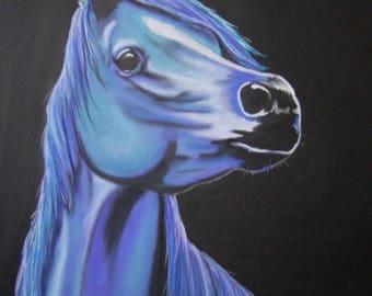 """Blue"" Arabian horse"