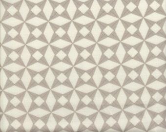 Moda Fabrics 2wenty Thr3e Triangle in Gray - Half Yard
