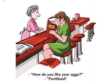 Fertilized Eggs Card