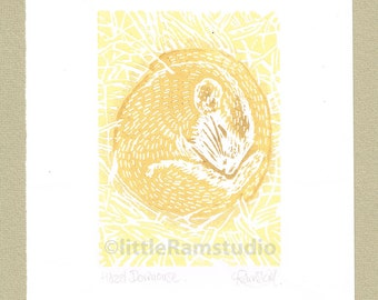 Dormouse, Sleeping Dormouse lino print - Linocut Original hand pulled Relief Print