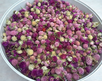 Dried flowers, dried gomphrena, multicolor gomphrena,dried flowers for jewellery,florist supply,DIY supply,dried flower confetti,flower toss