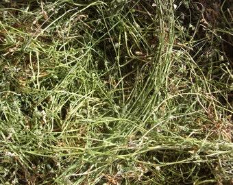 57gr/2oz dried Shepherd's Purse, Capsella, flower stem leaves Wildflower Herbs Tea Crafted Organic Natural Health Capsella bursa-pastoris