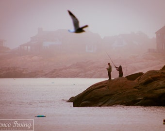 Headland Mist (Bearskin Neck, Rockport Harbor, Massachusetts; Photograph, Photo; New England; Seagull, Fishing; Silhouette)
