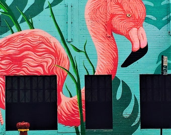 Chicago Photography, Pink Flamingo Street Art, Street Art, Pink Flamingo, Street Art Photography, Colorful Wall Art, Square Photo
