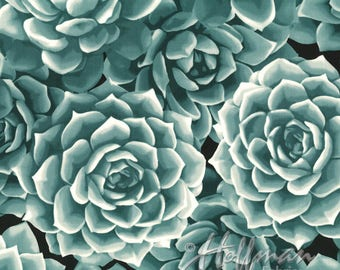Hoffman - Agave - Packed Succulents - Eucalyptus - Fabric by the Yard P7568-436