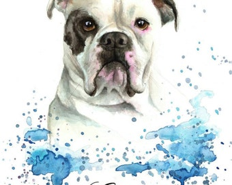 Personalised Pet Portrait colourful illustration made with watercolours and pastels personalised painting from photo
