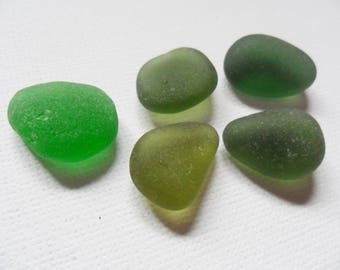 5 pretty green sea glass - Lovely English beach finds.