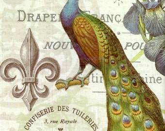 French Peacock Collage Digital Instant Download for Scrapbooking, Paper Arts, Mixed Media, Jewelry and MORE PSS 3040