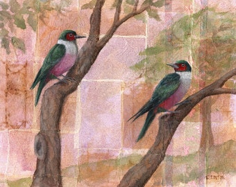 Lewis's Woodpeckers, Bird Painting, Bird Artwork, Bird Family Art, Animal Art Print, Bird Wall Art, Bird Illustration, Wildlife Painting Art