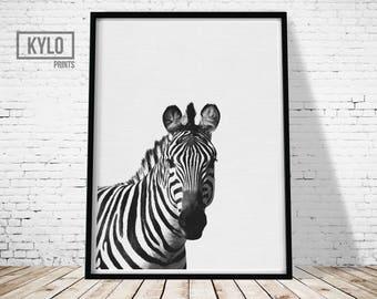 Zebra Print, Safari Animals, Animal Print, African Animal, Zebra Photography, Nursery Decor, Instant Download, Nursery Wall Art, Wall Art