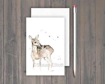 Brown Deer Postcard