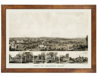 Amherst, MA 1855 Bird's Eye View; 24x36 Print from a Vintage Lithograph