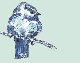 Bird Art - Bird Decor -Bird Drawing - New Blue Bird - Bird Wall Decor