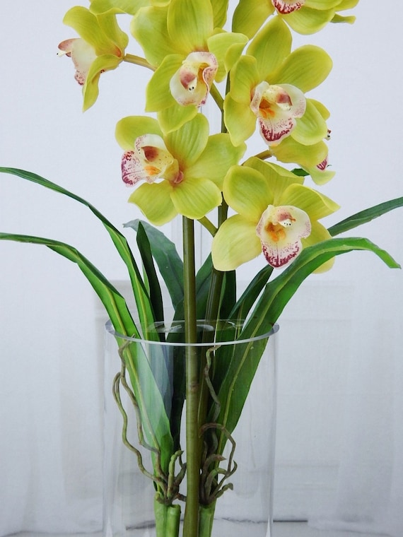 Green cymbidium orchids plant acrylic water faux silk green cymbidium orchids plant acrylic water faux silk real touch flowers tall floral arrangement centerpiece glass vase decor mightylinksfo Gallery