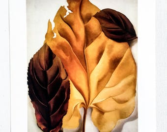 Georgia O'Keeffe / Brown And Tan Leaves / 1928 / Art / Book Page Print / Published 1990's