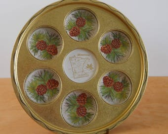 Vintage Souvenir Metal Serving Tray • Vintage Minnesota Serving Tray • Metal State Tray