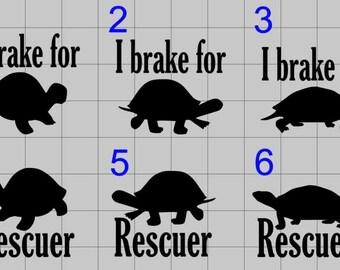 Turtle decals