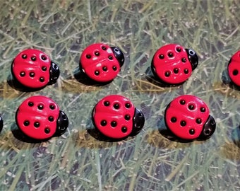 Ladybug Push Pins or Magnets