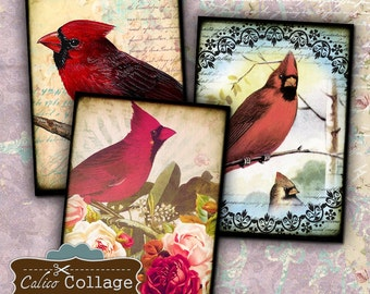 Red Birds Digital Collage Sheet Cardinal Digital Images for Greeting Cards, Gift Tags, Decoupage Paper, Earring Cards, Jewelry Holders