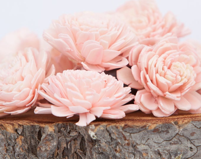 Blush Pink Belly Sola Flowers - SET OF 10 , Sola Flowers, Wood Sola Flowers, Belli Sola, Balsa Wood Flowers, Sola Flowers, craft flower, DIY