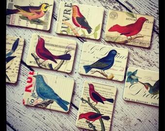 SALE Vintage Bird & Nest Magnets Archival images 6 random magnets