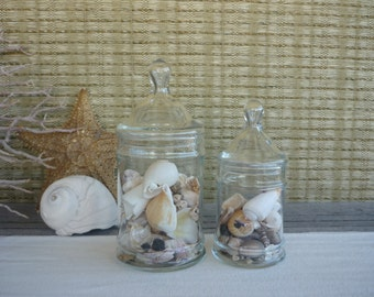 Set of 2 Vintage Apothecary Jars, Glass Display Jars, Cottage Decor, Shabby Chic