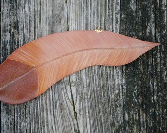 Medium Brown Fantasy Feather Stained Glass Window Hanging