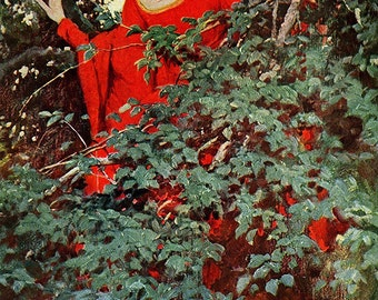 Howard Pyle Vintage Art Print For A Heart-Beat She Saw Him