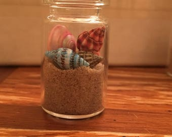 Miniature Beach themed Jar