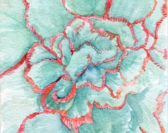 Original echeveria blue wave Watercolor Painting, coral, minty succulents 5 x 7
