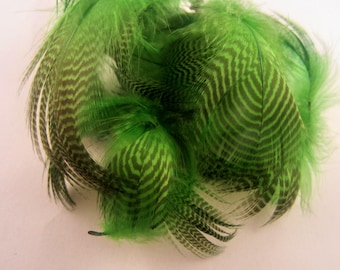 Teal Flank craft feathers fly tying duck feathers fascinators and more  fuchsia