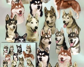 Siberian Husky Dog Gift Wrapping Paper with matching Gift Card.