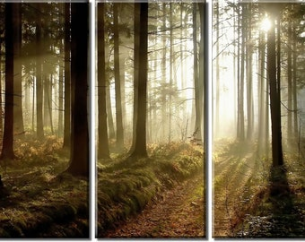 Framed Huge 3-Panel Sun Light Autumn Forest Trees Park Canvas Art Print - Ready to Hang