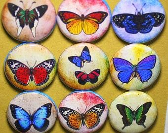 Butterfly Splatter Magnets - One Inch