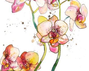 Pink Orchids // A4 Giclée Print // Illustration