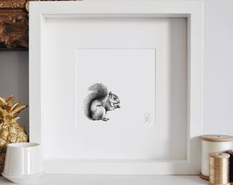 Framed Squirrel Print