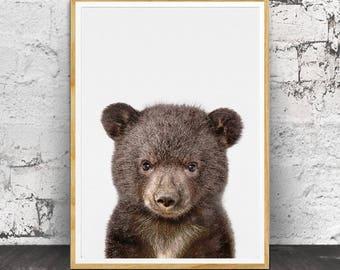 Bear Cub Print, Woodland Animals, Baby Bear Art Print, Baby Animal Print, Baby Nursery Art, Wall Art, Animal Nursery,  Nursery Printable
