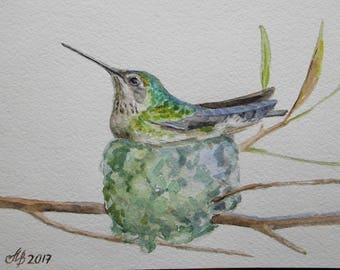 "Hummingbird in nest, original watercolor painting Handmade 5 ""x 8"" (15х20 cm) bird, colibri, decorative bird, painting, mini pictures"